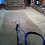 carpet in living room being cleaned
